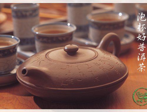 泡杯好茶-水質篇